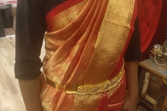 Advanced-Saree-Draping-Course-7