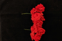 Red-Button-Roses