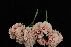 White-Peach-Small-Flowers