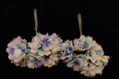 White-Rainbow-Small-Flowers