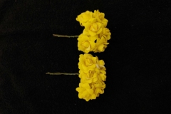 Yellow-Button-Roses