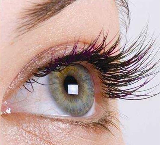 Eyelash Extensions Zorains Studio